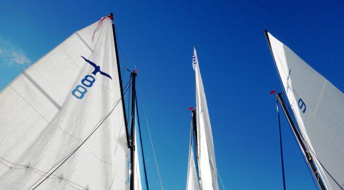 Clubregatta 2016: Erfolgreicher Start mit 6 Yachten und 30 SeglerInnen
